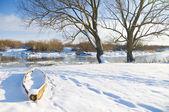 зимняя река — Стоковое фото