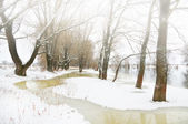 Winter river — Foto de Stock