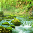 Stock Photo: River deep in mountain forest.