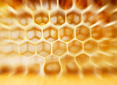 Beer honey in honeycombs. — Foto de Stock