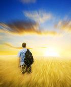 Man in yellow wheat meadow. — Stock Photo