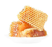 Honey honeycombs — Stock Photo