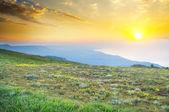 Sunset in summer mountains. — Stock Photo