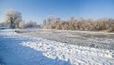 Escena de invierno — Foto de Stock