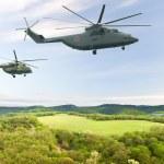 Постер, плакат: Military helicopters