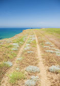 Footpath at the sea — Stock Photo