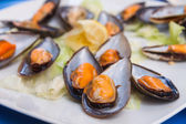 Giant mussels — Stock Photo