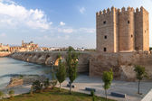 View of old Roman bridge with  Calahorra Tower, Spain  — Stock Photo