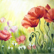 Poppies in the morning, oil painting on canvas — 图库照片