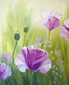 Poppies in the morning, oil painting on canvas — Stock Photo