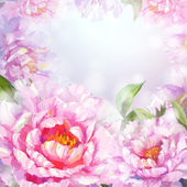 Peonies flowers background. — Stock Vector