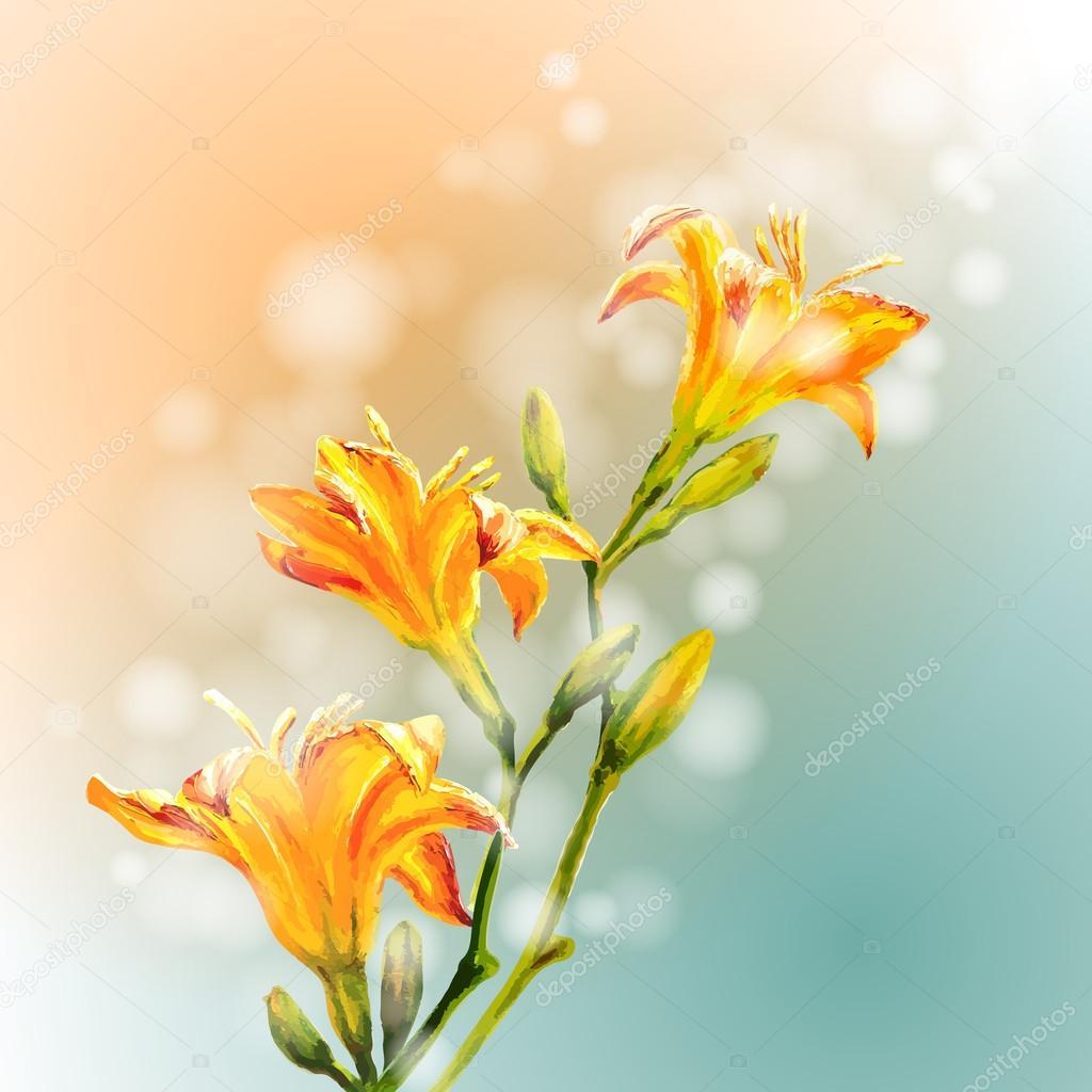 黄色百合花鲜花背景
