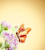 Painted watercolor card with summer flowers and butterfly — Stock Photo