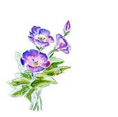 春天的花朵,水彩插画 — 图库照片