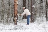 O homem idoso grisalho atraente costeletas de madeira — Fotografia Stock