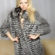 Elegant attractive girl in a fur coat - Stock Photo