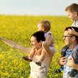 Happy family of four in a field — Stock Photo #26132127