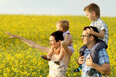 Happy family of four in a field — Stok fotoğraf