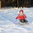 Little child in a winter park — Stock Photo #42899019