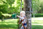 Niño en un tour de canopy — Foto de Stock