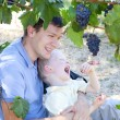 Father and son eating grapes — Stock Photo #13381737