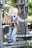 Little boy at a canopy tour — Stock Photo