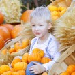 Boy at the pumpkin patch — Stock Photo #30127771