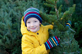 Christmas market — Stockfoto