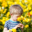 Spring time — Stock Photo #37417631