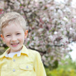 Boy at spring time — Stock Photo