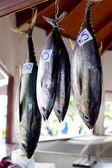Tuna fish at market — Stock Photo