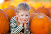 Boy at pumpkin patch — Stock Photo