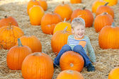 Kid at pumpkin patch — Stok fotoğraf