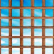 Lattice — Stock Photo #12841311