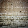 Brick wall — Stock Photo #13896164