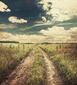 Strada di campagna nei campi — Foto Stock