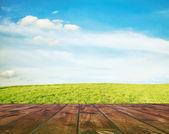 Grass, sky and floor — Stock Photo