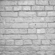 Brick wall — Stock Photo #31537071
