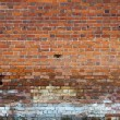 Brick wall — Stock Photo #31537093