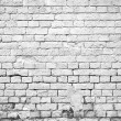 Brick wall — Stock Photo #35436319