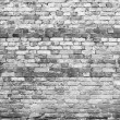Brick wall — Stock Photo #35436373