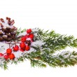 Christmas decoration — Stock Photo #36967831
