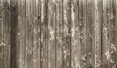 Mur en bois — Photo
