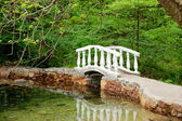 Small bridge — Stockfoto