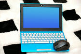 Netbook with a mouse — Stock Photo