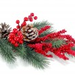Christmas tree branch with red berries — Stock Photo #35058837