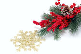 Fur-tree branch with red berries and snowflakes — Stock Photo