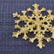 Snowflake — Stock Photo #35611985