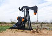 Aceite bomba gato en texas, estados unidos — Foto de Stock