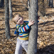Little boy plays eighteen months in forest — Stock Photo #24872583